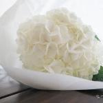 Unohda siivous, osta kukkia