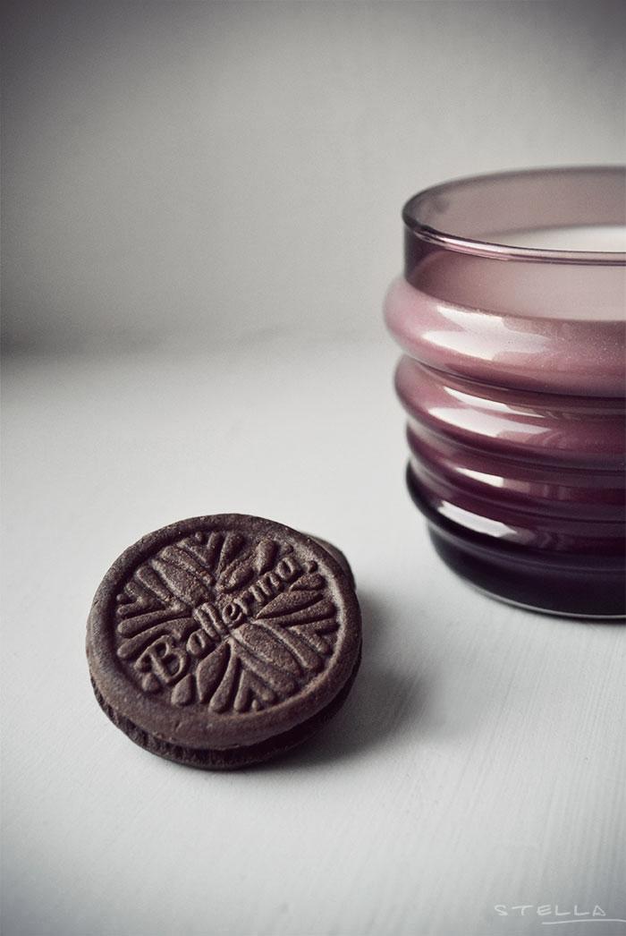 2013-12-stellaharasek-milkandcookies-2