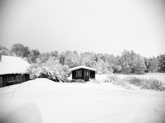 2013-12-stellaharasek-whitexmas-bw-01
