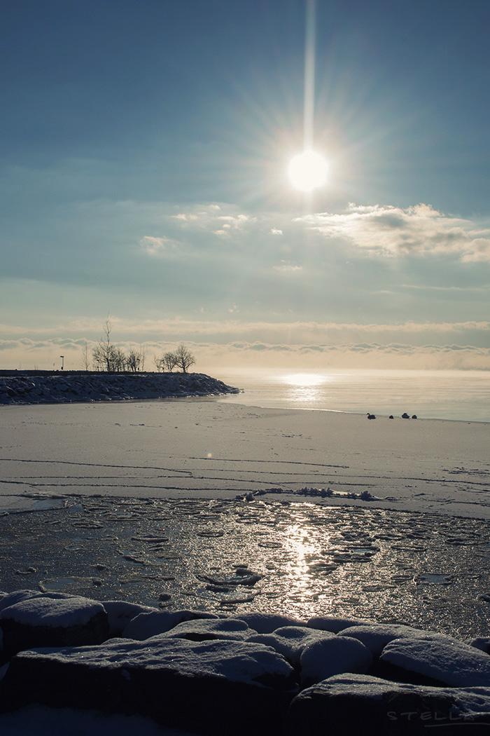 2014-01-stellaharasek-helsinki-merisatamanranta-04