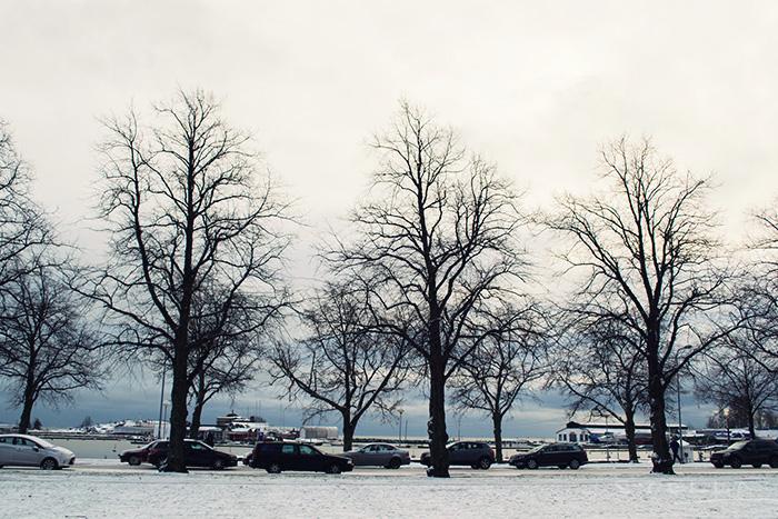 2014-01-stellaharasek-kaivopuisto-helsinki-08