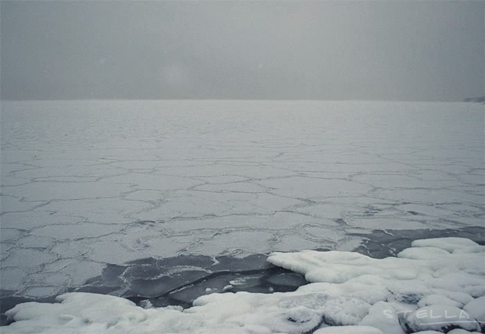 2014-02-stellaharasek-helsinki-merensatamanranta-01