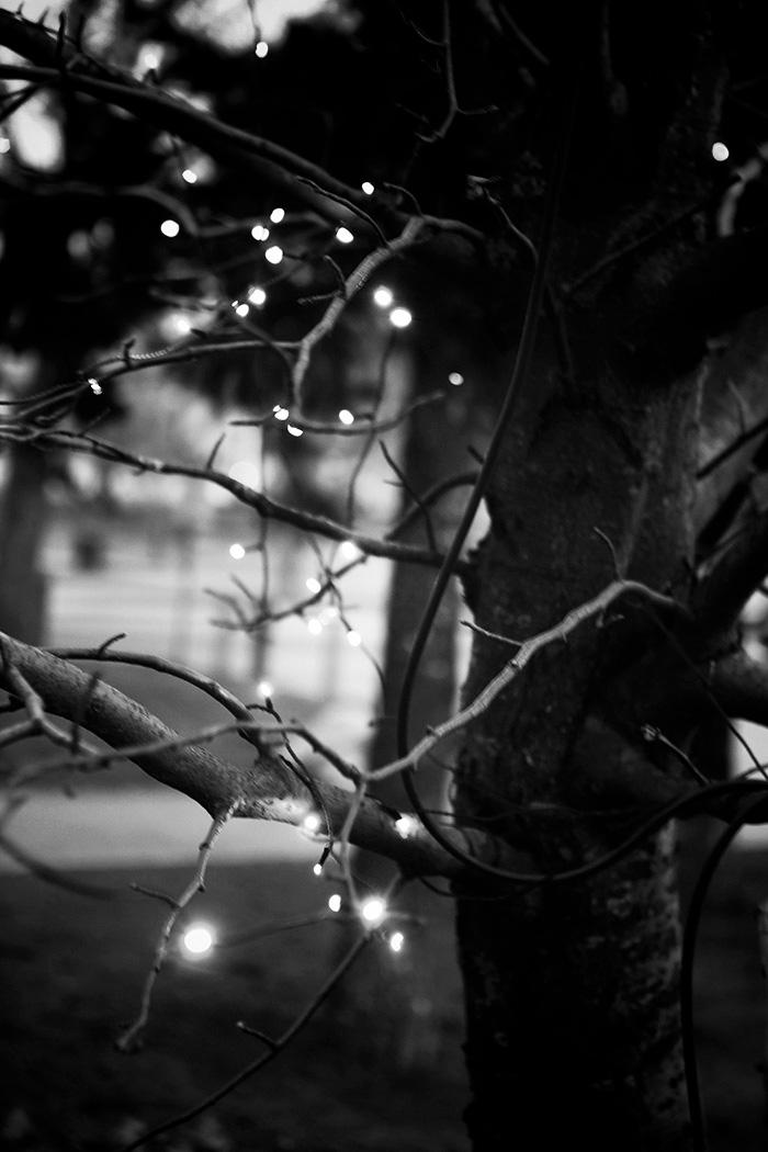 2014-02-stellaharasek-photobydoritsalutskij-5