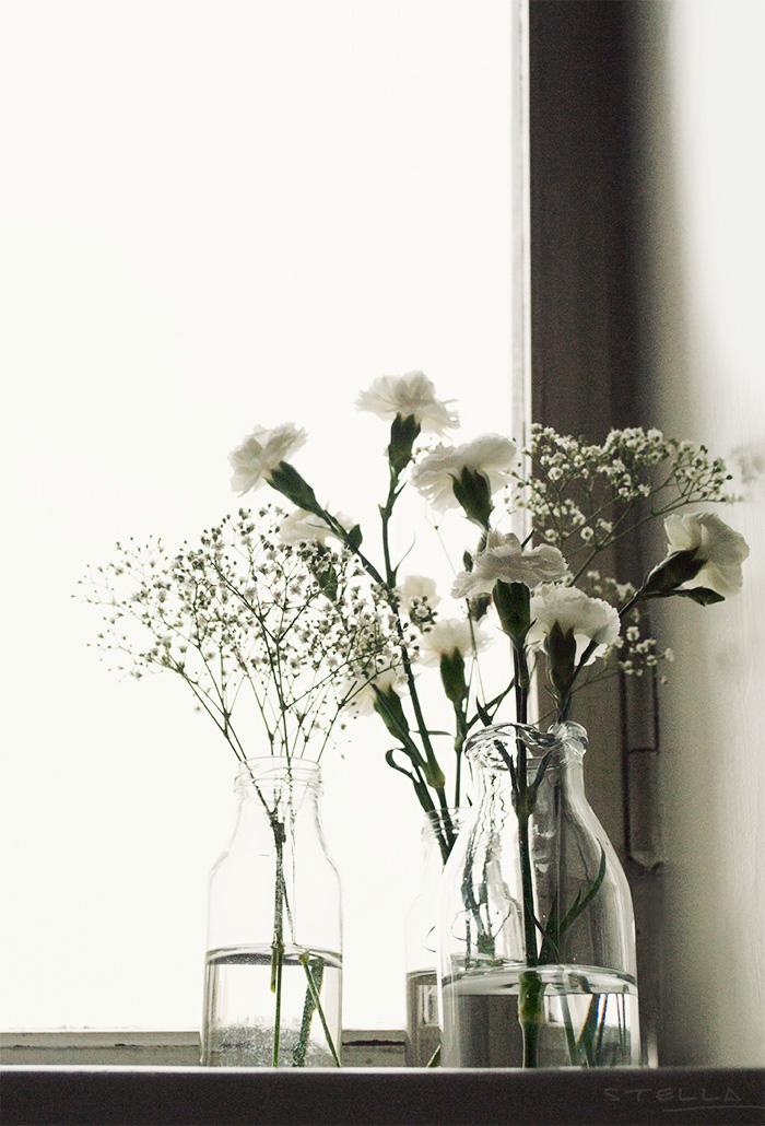 2014-03-05-stellaharasek-flowerpower-3