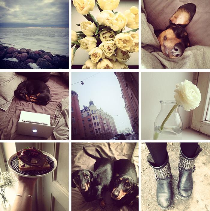 2014-03-stellaharasek-instagram-02