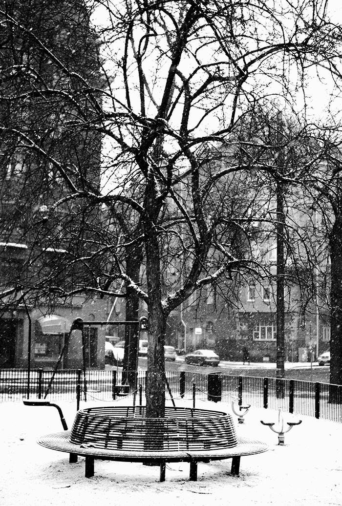 2014-04-stellaharasek-helsinki-ullanlinna-snowstorm-02