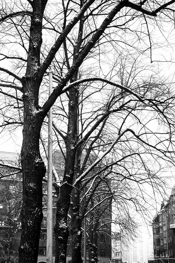 2014-04-stellaharasek-helsinki-ullanlinna-snowstorm-04