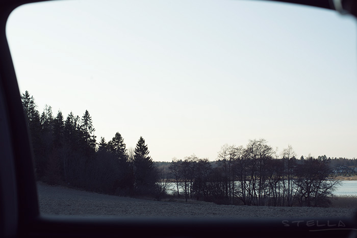 2014-04-stellaharasek-turku-kuusisto-07