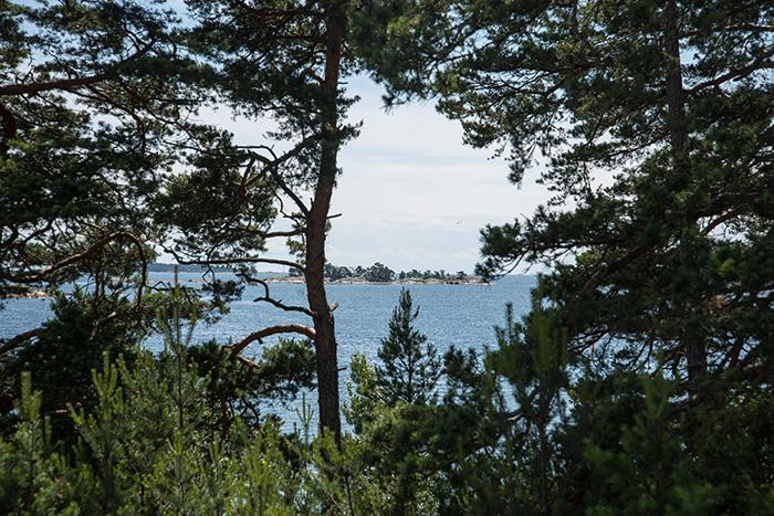 2014-09-15-stellaharasek-estholmen-9