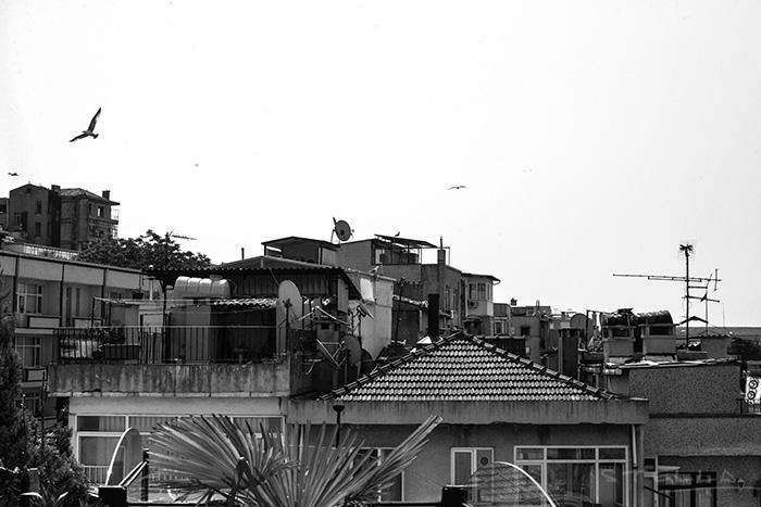 2015-05-27-stellaharasek-istanbul-7