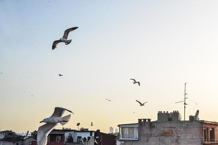 2015-05-31-stellaharasek-istanbul-streetstyle-3