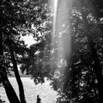 2015-08-23-stellaharasek-hiidenvesi-01