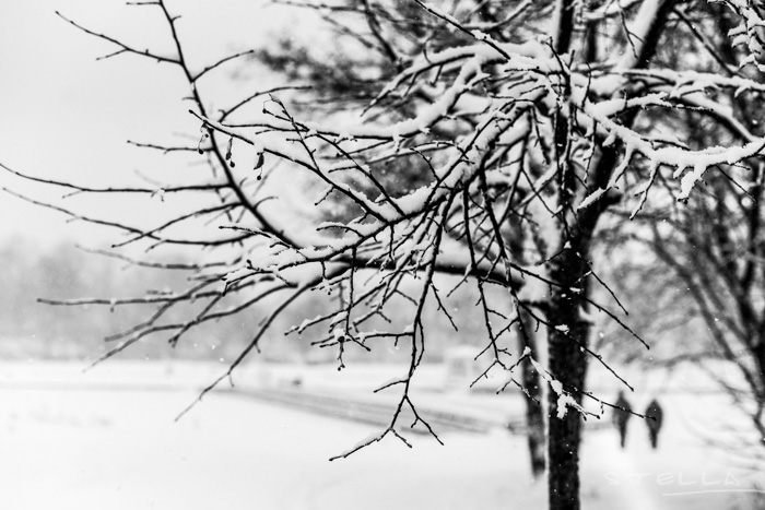 2016-01-22-stellaharasek-helsinki-snow-17