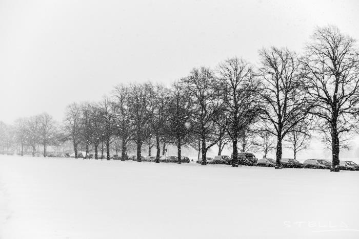 2016-01-22-stellaharasek-helsinki-snow-3