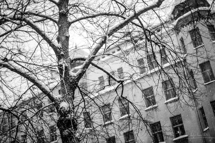2016-01-22-stellaharasek-helsinki-snow-6