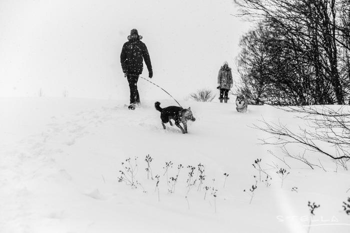 2016-01-22-stellaharasek-helsinki-snow-7
