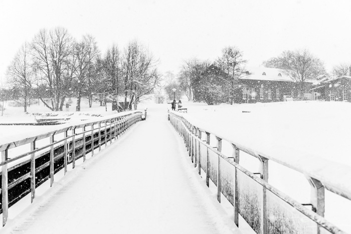 2016-01-22-stellaharasek-helsinki-snow-9