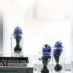 Vastuullisia kukkia ja tuoksuvia jouluasetelmia